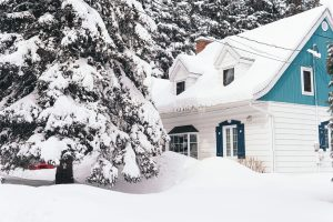 brown house covered with snow near trees during daytime