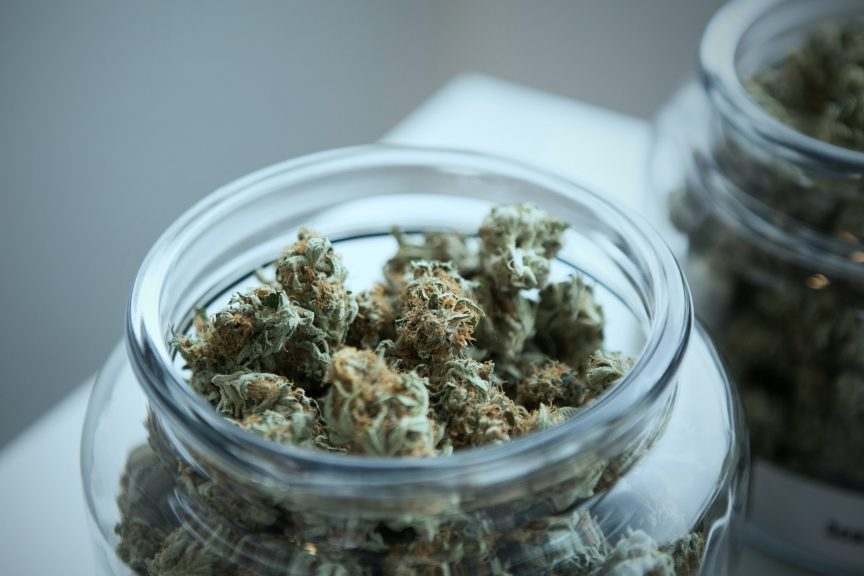 green cannabis on clear glass jar